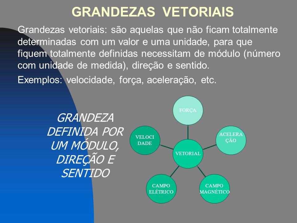 GRANDEZAS VETORIAIS Grandezas vetoriais: são aquelas que não ficam totalmente determinadas com um valor e uma unidade, para que fiquem totalmente definidas necessitam de módulo (número com unidade de medida), direção e sentido.