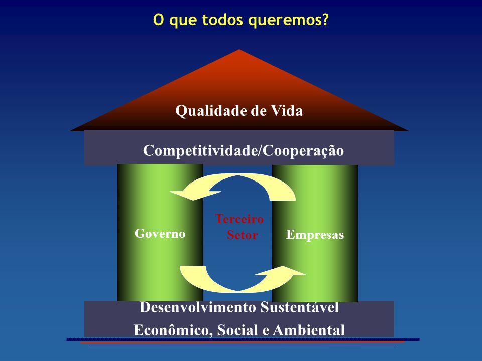 Qualidade de Vida Competitividade/Cooperação Ambiência Competitiva Desenvolvimento Sustentável Econômico, Social e Ambiental Terceiro Setor Empresas G