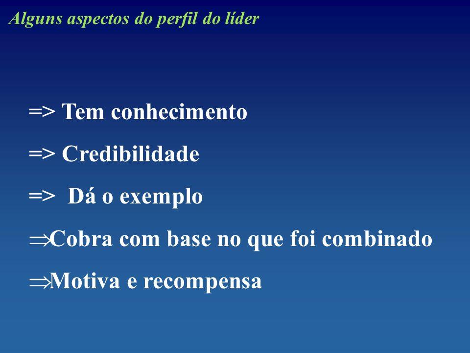 Alguns aspectos do perfil do líder => Tem conhecimento => Credibilidade => Dá o exemplo Cobra com base no que foi combinado Motiva e recompensa