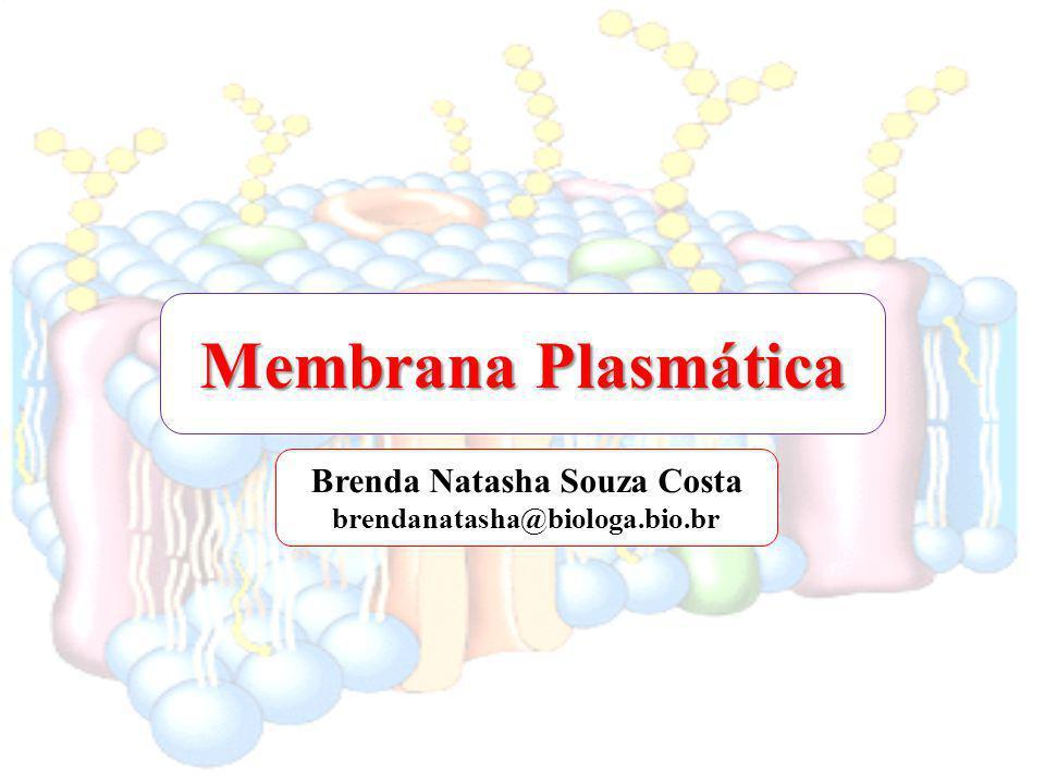 Membrana Plasmática Brenda Natasha Souza Costa brendanatasha@biologa.bio.br