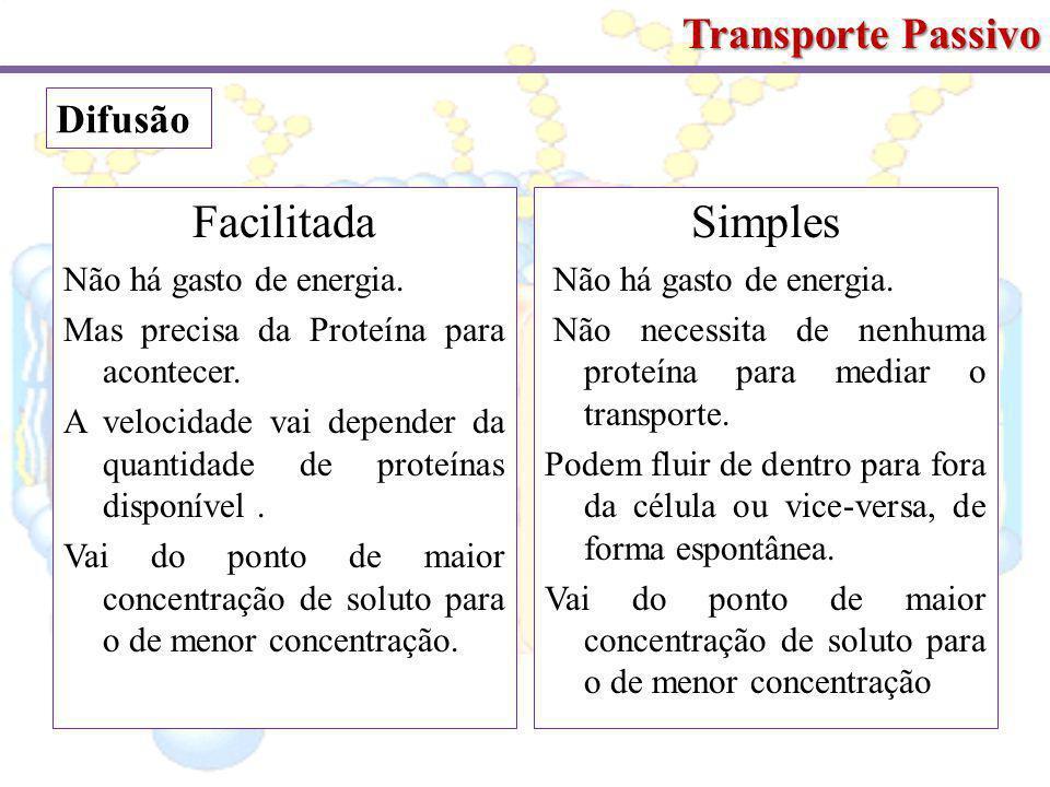 Transporte Passivo Facilitada Não há gasto de energia.