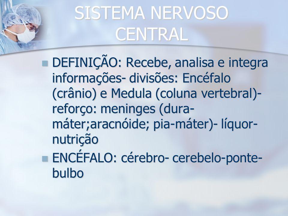 Sinapse: local de comunicação entre neurônios ou entre neurônios e outras células (músculos, por ex.) MIOFIBRILA MITOCÔNDRIAS Neurotransmissores Fenda