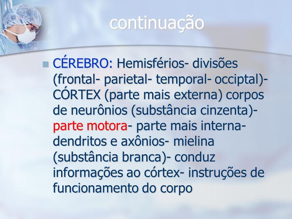 SISTEMA NERVOSO CENTRAL DEFINIÇÃO: Recebe, analisa e integra informações- divisões: Encéfalo (crânio) e Medula (coluna vertebral)- reforço: meninges (