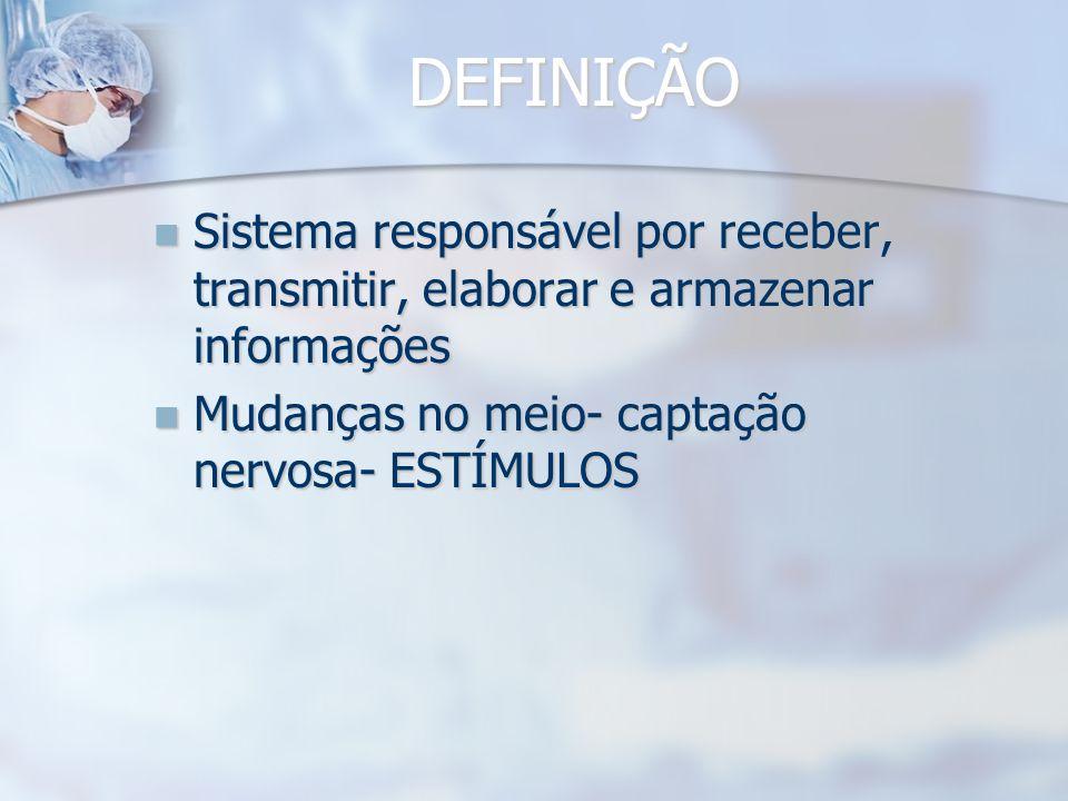 SISTEMA NERVOSO TIPOS DE CÉLULAS DIVISÕES