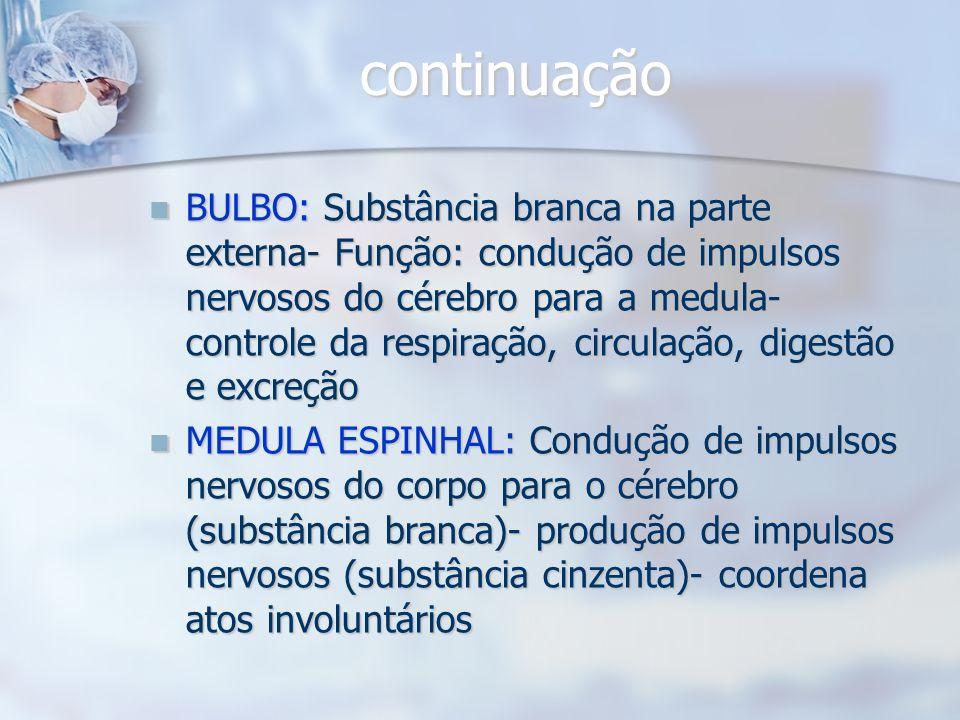 CEREBELO: Divisão em hemisférios- córtex (substância cinzenta) - Funções: movimentos voluntários- equilíbrio- postura- coordenação sensorial- memória
