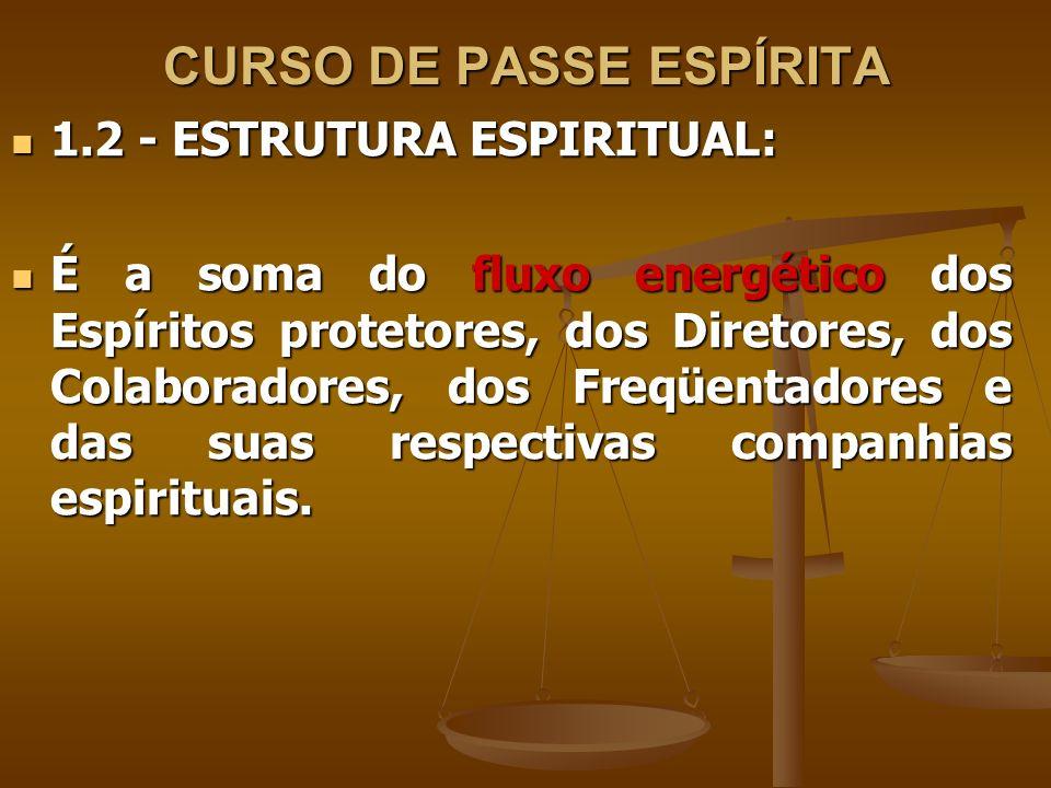 CURSO DE PASSE ESPÍRITA 1.3 - BUSCA DE RESULTADOS: 1.3 - BUSCA DE RESULTADOS: O valor de um Centro Espírita se mede pelos resultados obtidos.