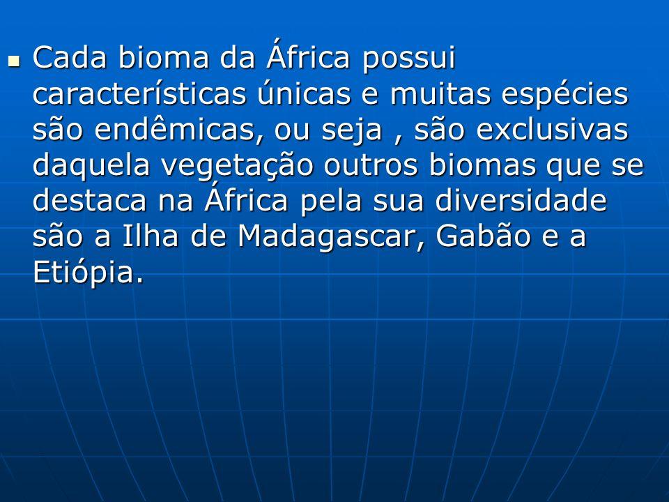 Tipos de clima Continente africano Pag.