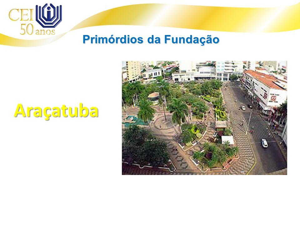 Araçatuba Primórdios da Fundação