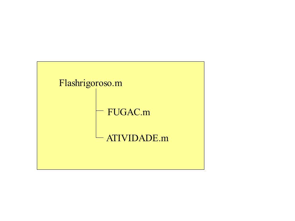 Flashrigoroso.m FUGAC.m ATIVIDADE.m