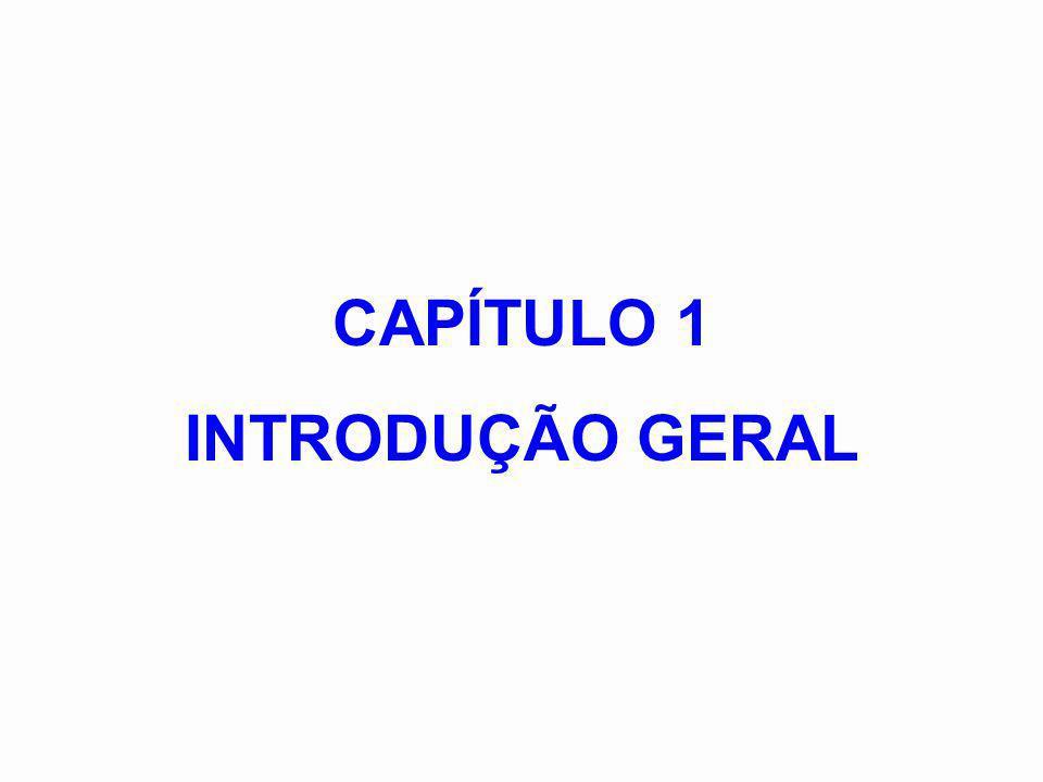 As primeiras disciplinas: 1970: Análise e Simulação de Processos (PEQ/COPPE) 1976: Desenvolvimento e Projeto de Processos (EQ/UFRJ) Síntese de Processos (PEQ/COPPE) No Brasil: As primeiras teses: 1.Taqueda,E.R., Análise de Processos Complexos por Computador Digital , Tese de Mestrado, COPPE/UFRJ (1973) 2.
