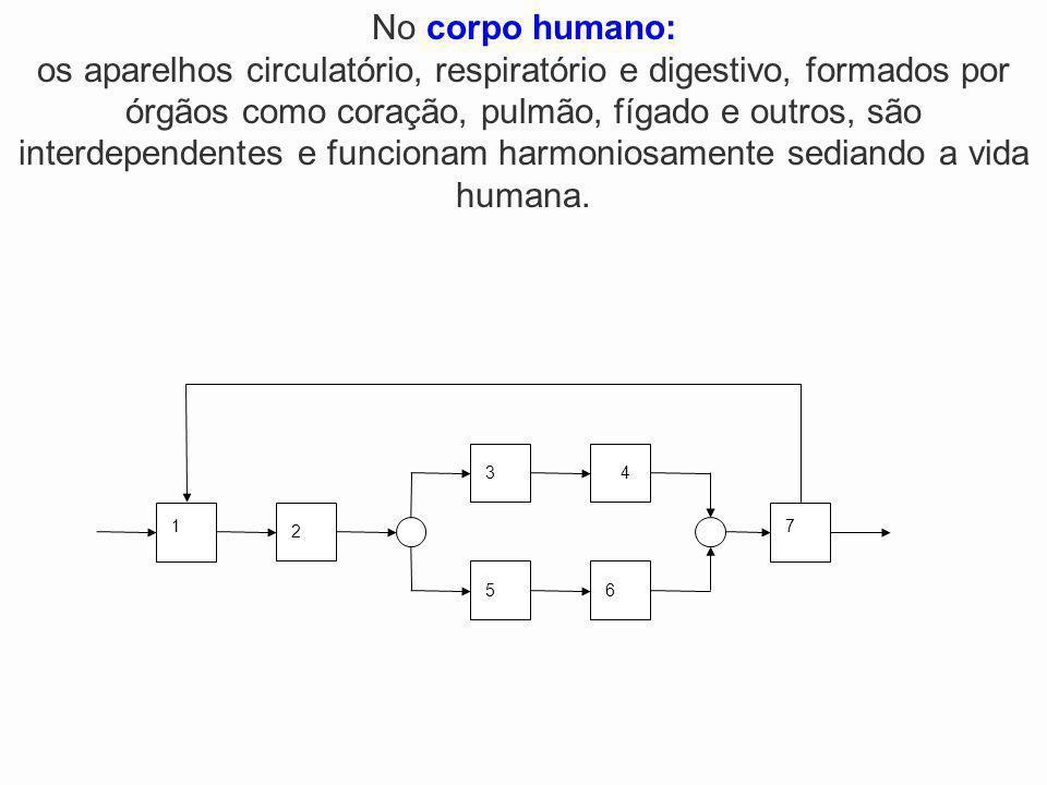 2 1 34 5 7 6 No corpo humano: os aparelhos circulatório, respiratório e digestivo, formados por órgãos como coração, pulmão, fígado e outros, são inte