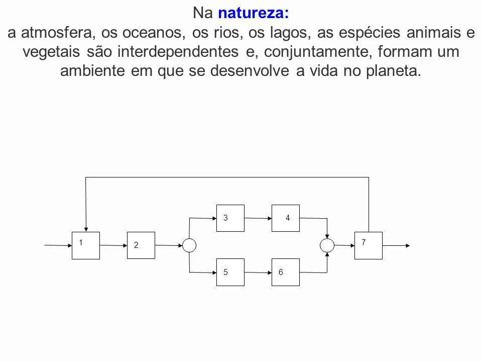 2 1 34 5 7 6 Na natureza: a atmosfera, os oceanos, os rios, os lagos, as espécies animais e vegetais são interdependentes e, conjuntamente, formam um