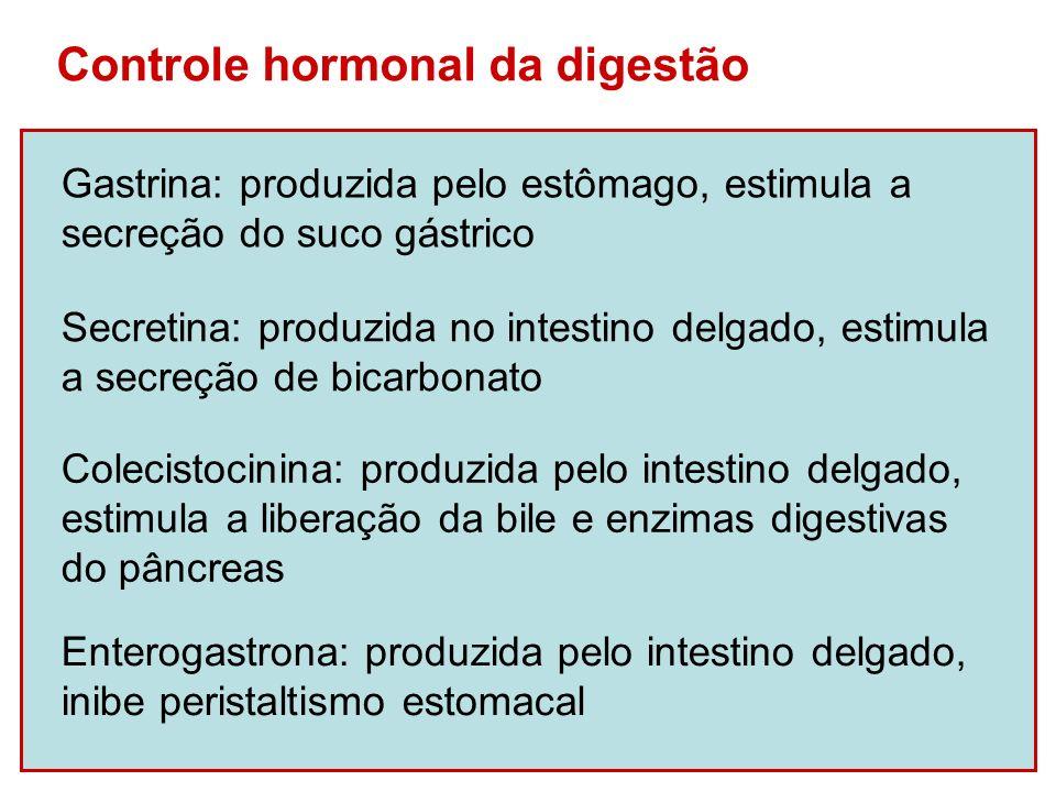 Controle hormonal da digestão Gastrina: produzida pelo estômago, estimula a secreção do suco gástrico Secretina: produzida no intestino delgado, estim