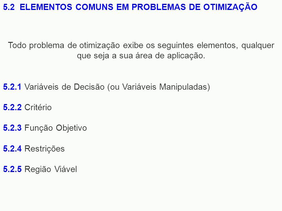 5.2.1 Variáveis de Decisão (ou Variáveis Manipuladas) 5.2.2 Critério 5.2.3 Função Objetivo 5.2.4 Restrições 5.2.5 Região Viável 5.2 ELEMENTOS COMUNS E