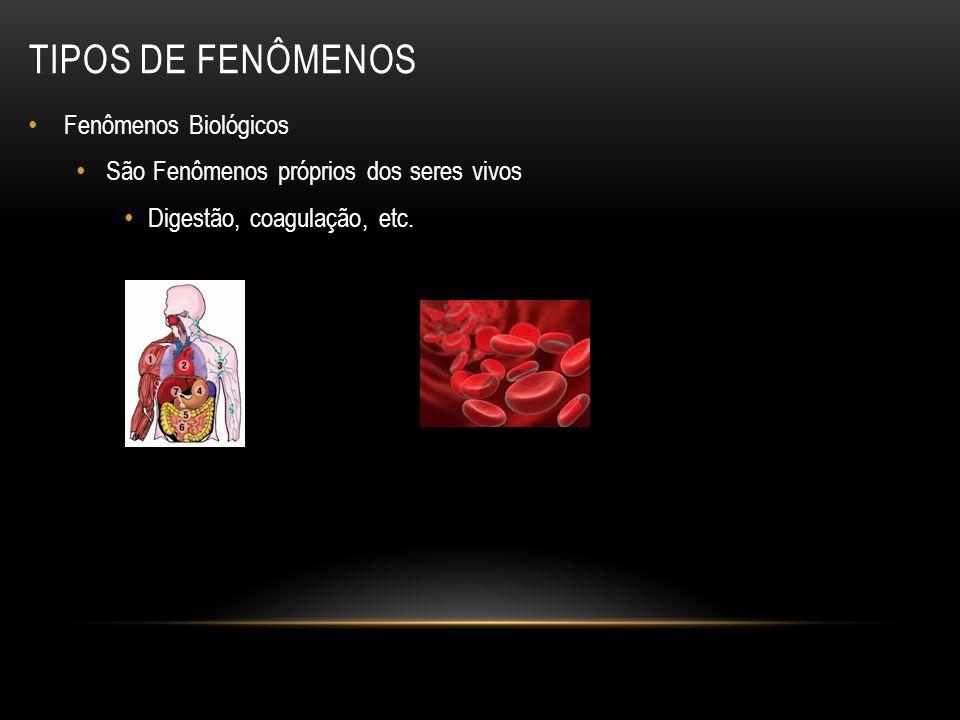 Fenômenos Biológicos São Fenômenos próprios dos seres vivos Digestão, coagulação, etc. TIPOS DE FENÔMENOS