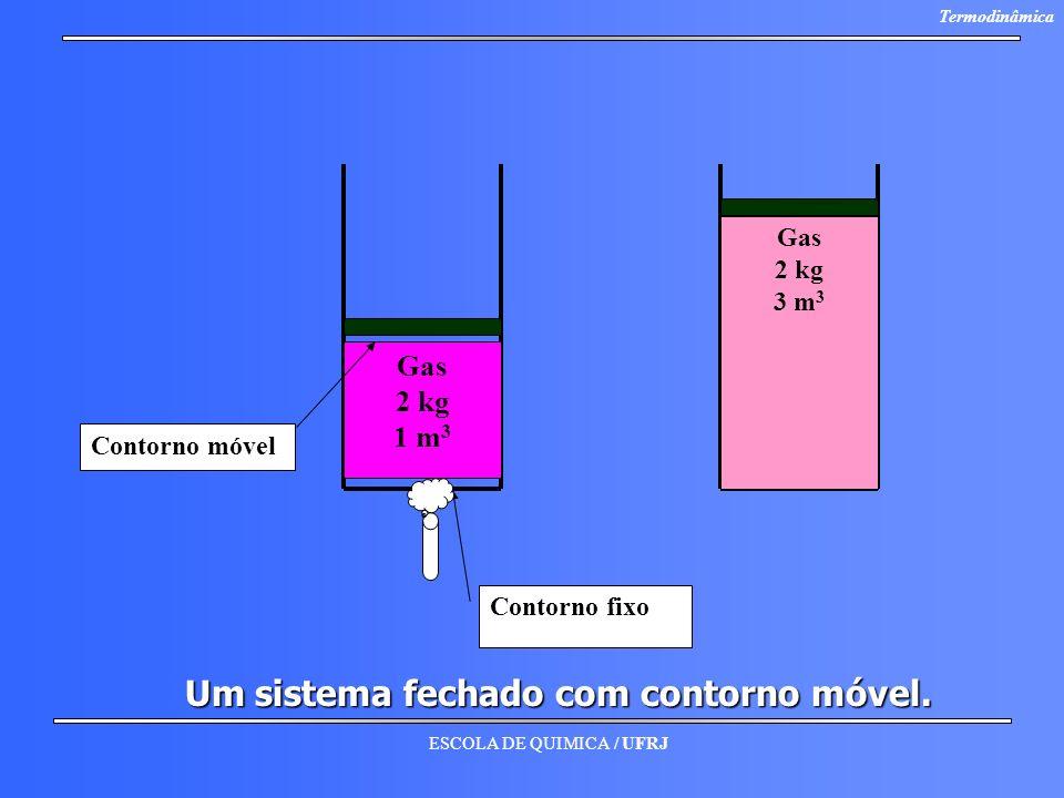 ESCOLA DE QUIMICA / UFRJ Termodinâmica Um sistema fechado com contorno móvel. Contorno móvel Gas 2 kg 3 m 3 Gas 2 kg 1 m 3 Contorno fixo