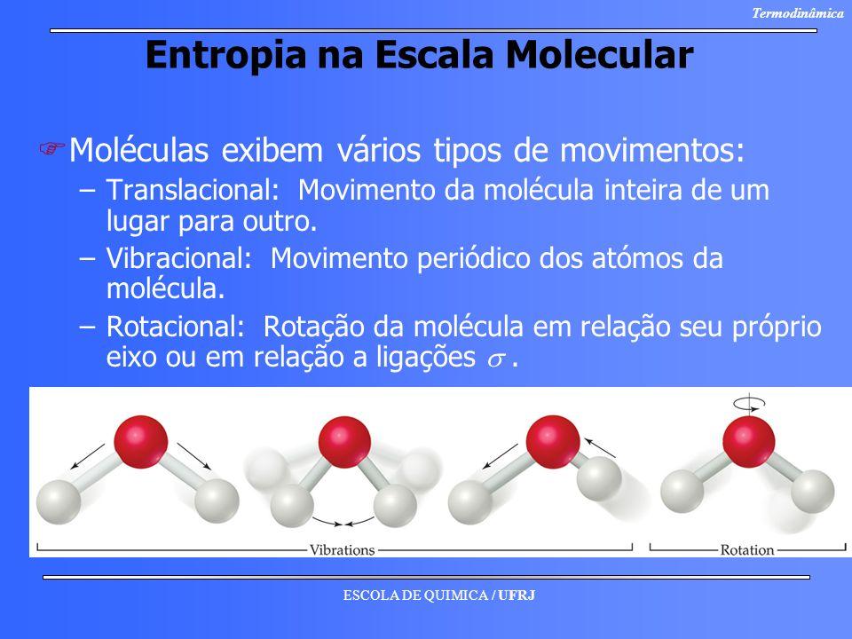 ESCOLA DE QUIMICA / UFRJ Termodinâmica Entropia na Escala Molecular F FMoléculas exibem vários tipos de movimentos: – –Translacional: Movimento da mol