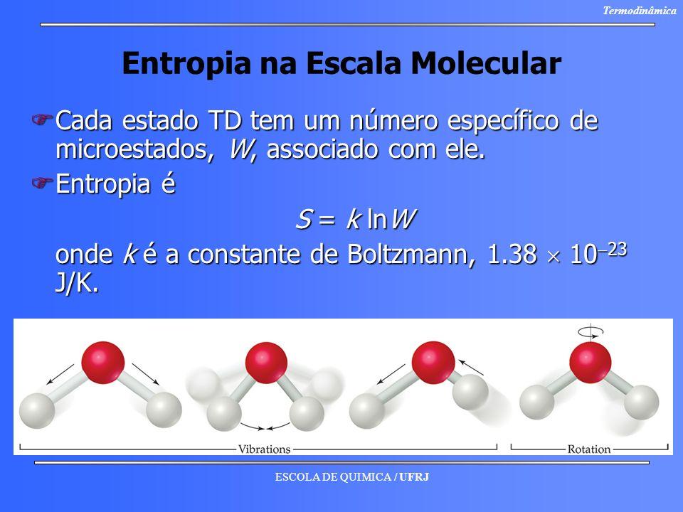 ESCOLA DE QUIMICA / UFRJ Termodinâmica Entropia na Escala Molecular FCada estado TD tem um número específico de microestados, W, associado com ele. FE