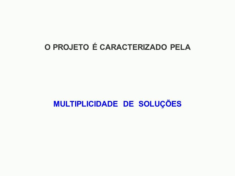 O PROJETO É CARACTERIZADO PELA MULTIPLICIDADE DE SOLUÇÕES