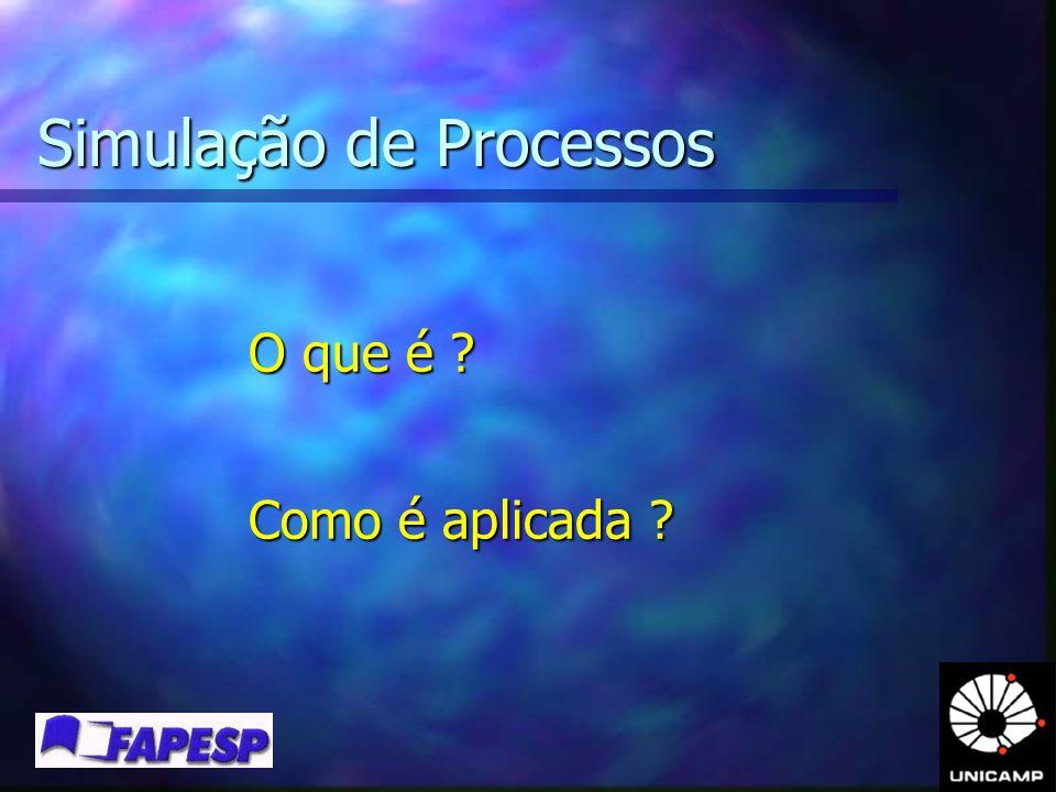 Simulação de Processos O que é ? Como é aplicada ?