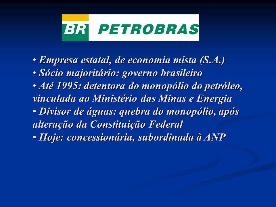 Empresa estatal, de economia mista (S.A.) Empresa estatal, de economia mista (S.A.) Sócio majoritário: governo brasileiro Sócio majoritário: governo b
