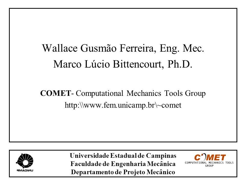Universidade Estadual de Campinas Faculdade de Engenharia Mecânica Departamento de Projeto Mecânico Wallace Gusmão Ferreira, Eng. Mec. Marco Lúcio Bit