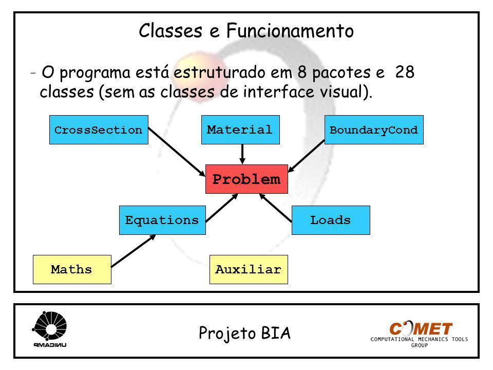 Classes e Funcionamento - O programa está estruturado em 8 pacotes e 28 classes (sem as classes de interface visual). Projeto BIA Problem Equations Ma