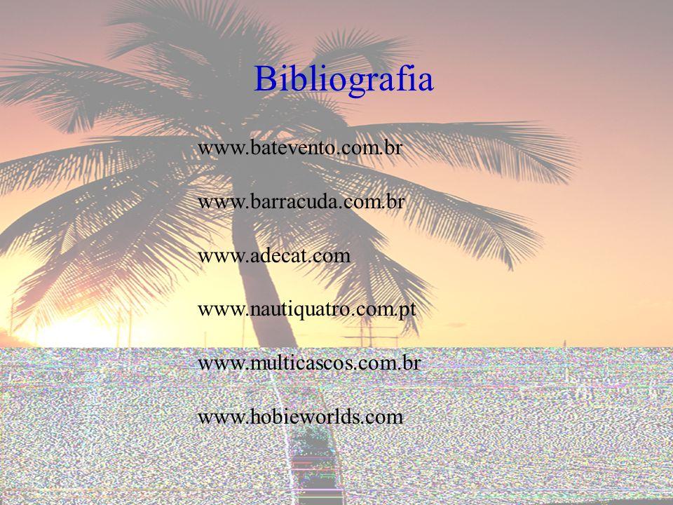 Bibliografia www.batevento.com.br www.barracuda.com.br www.adecat.com www.nautiquatro.com.pt www.multicascos.com.br www.hobieworlds.com