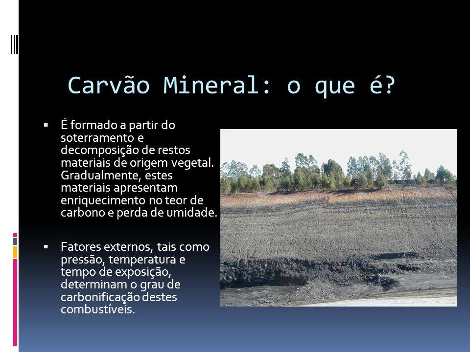 Composição aproximada das diversas etapas de formação do carvão mineral: EstágioUmidade (% total) Carbono (% base seca) Hidrogênio (%base seca) Oxigênio (% base seca) Madeira2050642,5 Turfa90605,532,3 Carvão marron60 a 4060 a 705>25 Linhito40 a 2065 a 75516 a 25 Sub-betuminoso*20 a 1075 a 804,5 a 5,512 a 21 Betuminoso*1075 a 904,5 a 5,55 a 20 Semi-betuminoso*< 590 a 924,0 a 4,54 a 5 Antracito< 592 a 943,0 a 4,03 a 4