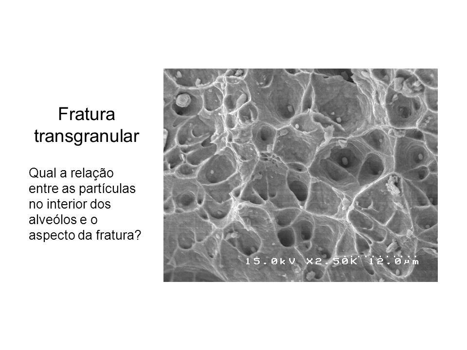 Fratura transgranular Qual a relação entre as partículas no interior dos alveólos e o aspecto da fratura?