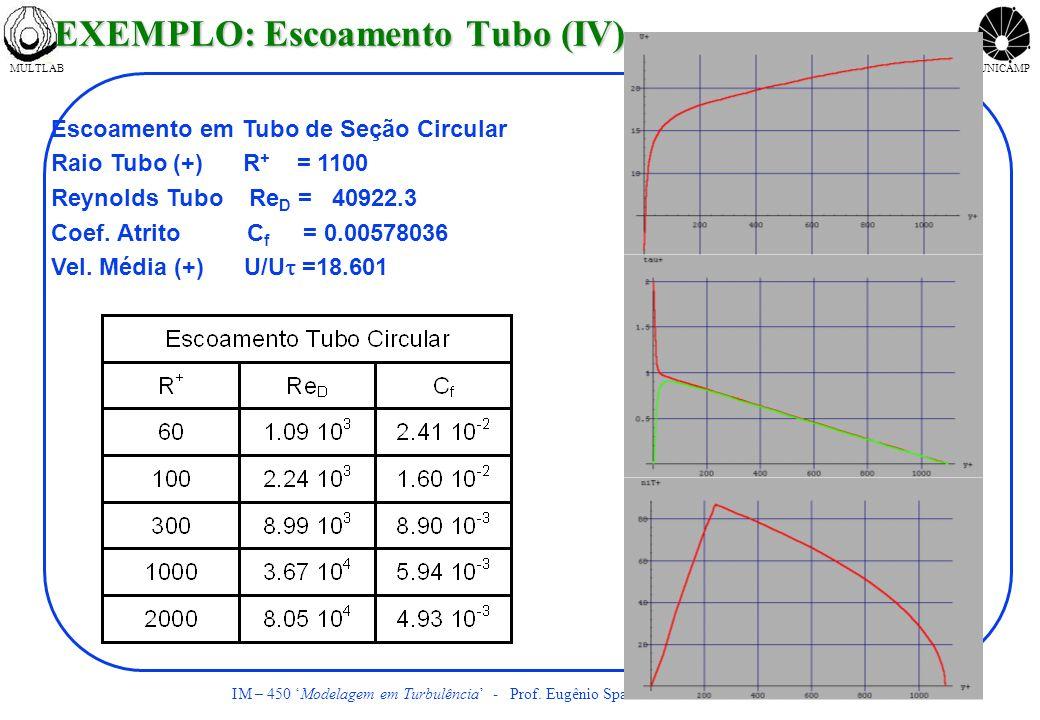 MULTLABUNICAMP IM – 450 Modelagem em Turbulência - Prof. Eugênio Spanó Rosa FEM/DE UNICAMP Escoamento em Tubo de Seção Circular Raio Tubo (+) R + = 11
