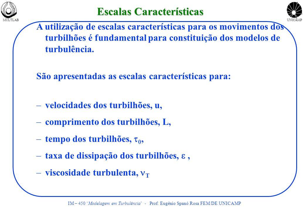 MULTLABUNICAMP IM – 450 Modelagem em Turbulência - Prof.