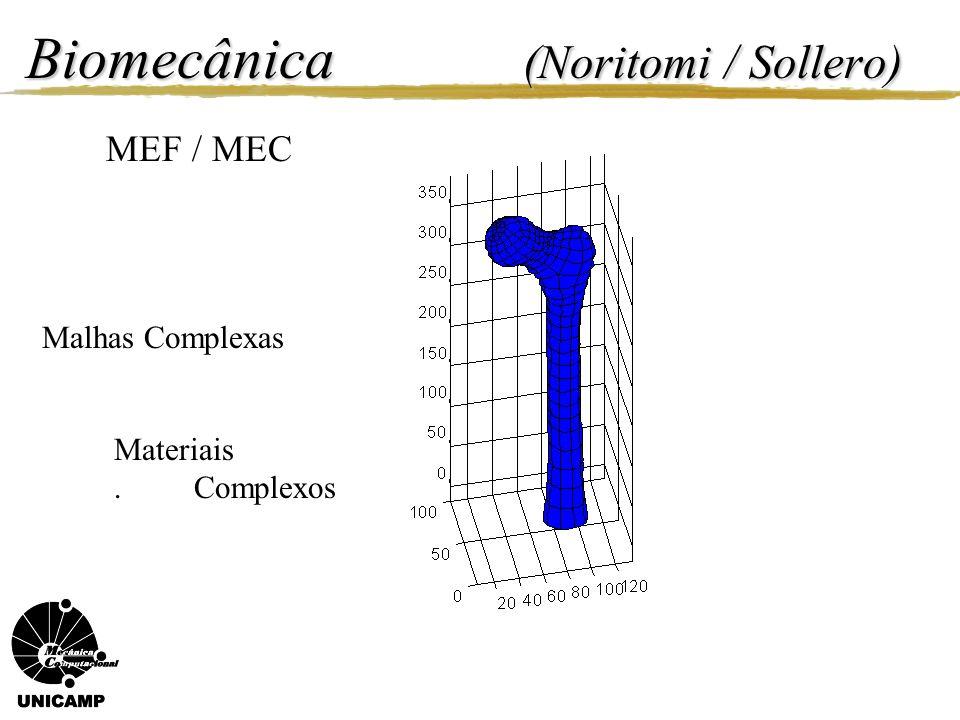 Biomecânica (Noritomi / Sollero) Campo de deslocamento Método dos Elementos de Contorno 3D.
