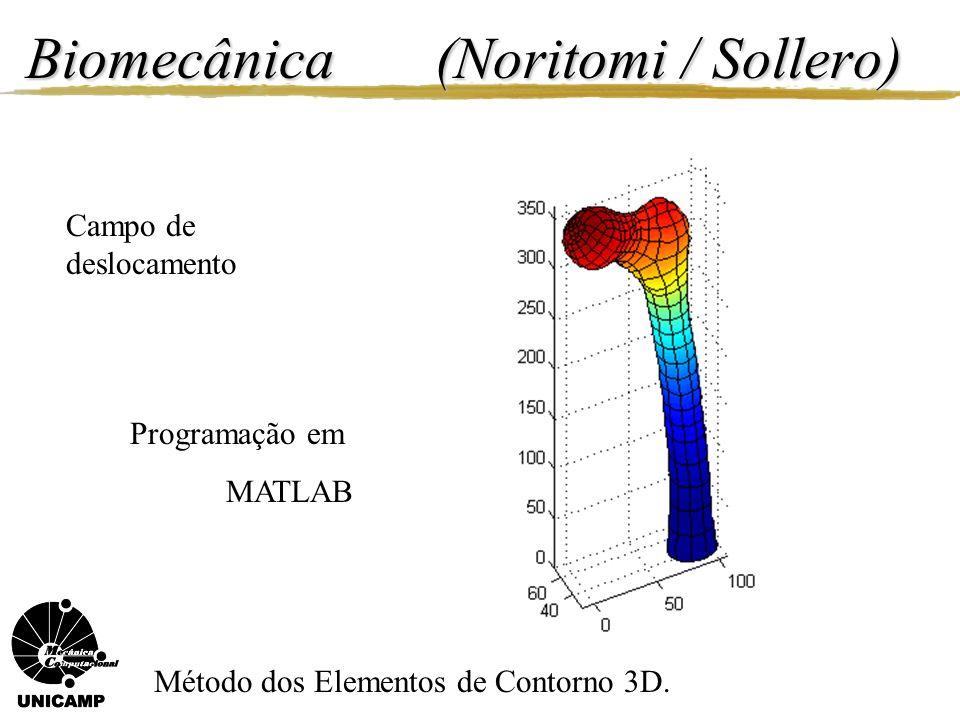 Biomecânica (Noritomi / Sollero) Campo de deslocamento Método dos Elementos de Contorno 3D. Programação em MATLAB