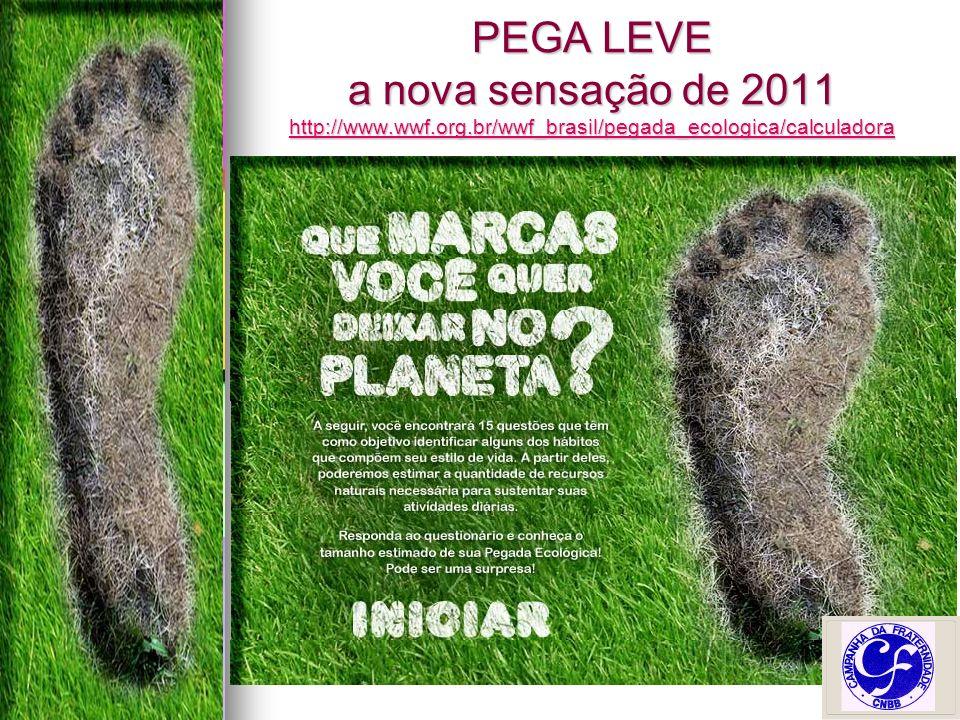 PEGA LEVE a nova sensação de 2011 http://www.wwf.org.br/wwf_brasil/pegada_ecologica/calculadora http://www.wwf.org.br/wwf_brasil/pegada_ecologica/calculadora