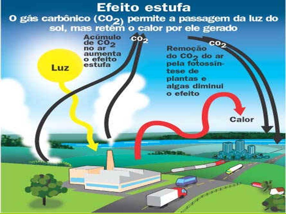 PRINCIPAIS FONTES EMISSORAS DE GASES ESTUFA Queima de combustíveis fósseis (petróleo e derivados, carvão mineral) e de florestas.