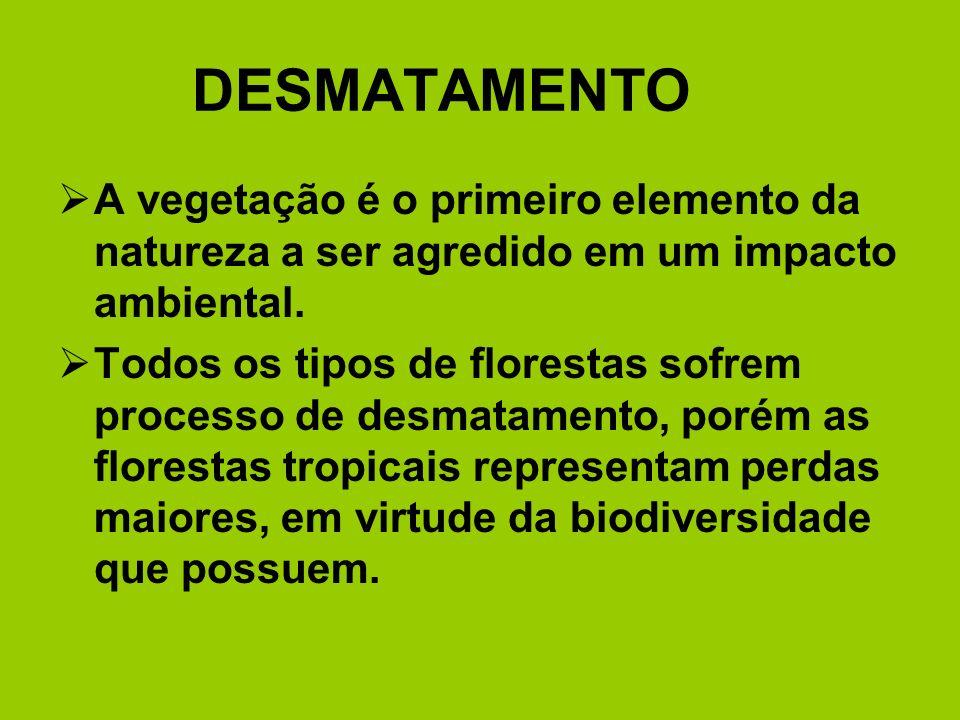 DESMATAMENTO A vegetação é o primeiro elemento da natureza a ser agredido em um impacto ambiental. Todos os tipos de florestas sofrem processo de desm