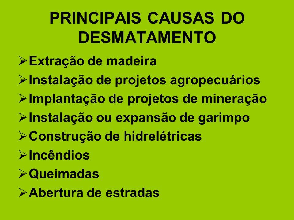 PRINCIPAIS CAUSAS DO DESMATAMENTO Extração de madeira Instalação de projetos agropecuários Implantação de projetos de mineração Instalação ou expansão