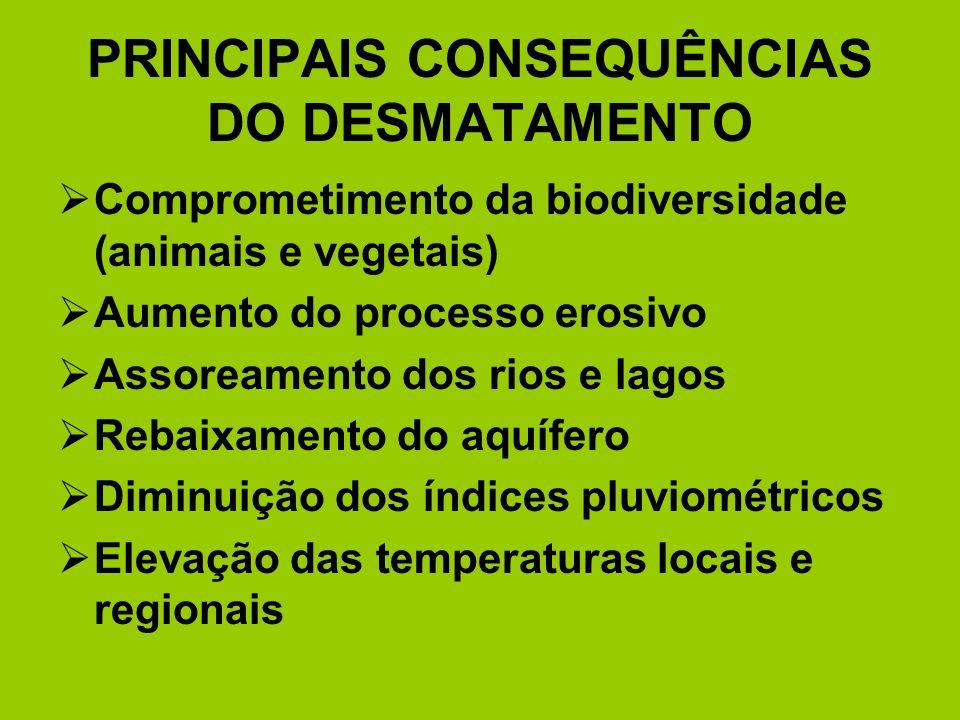 PRINCIPAIS CONSEQUÊNCIAS DO DESMATAMENTO Comprometimento da biodiversidade (animais e vegetais) Aumento do processo erosivo Assoreamento dos rios e la