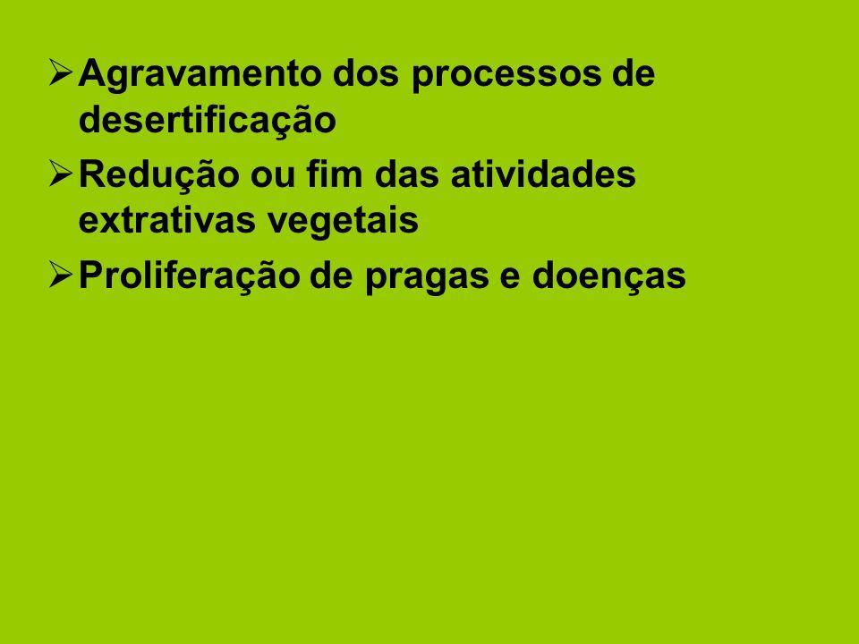 Agravamento dos processos de desertificação Redução ou fim das atividades extrativas vegetais Proliferação de pragas e doenças