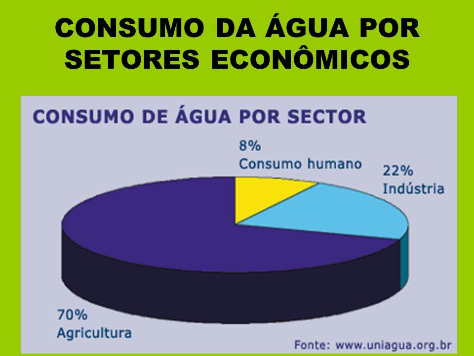 CONSUMO DA ÁGUA POR SETORES ECONÔMICOS