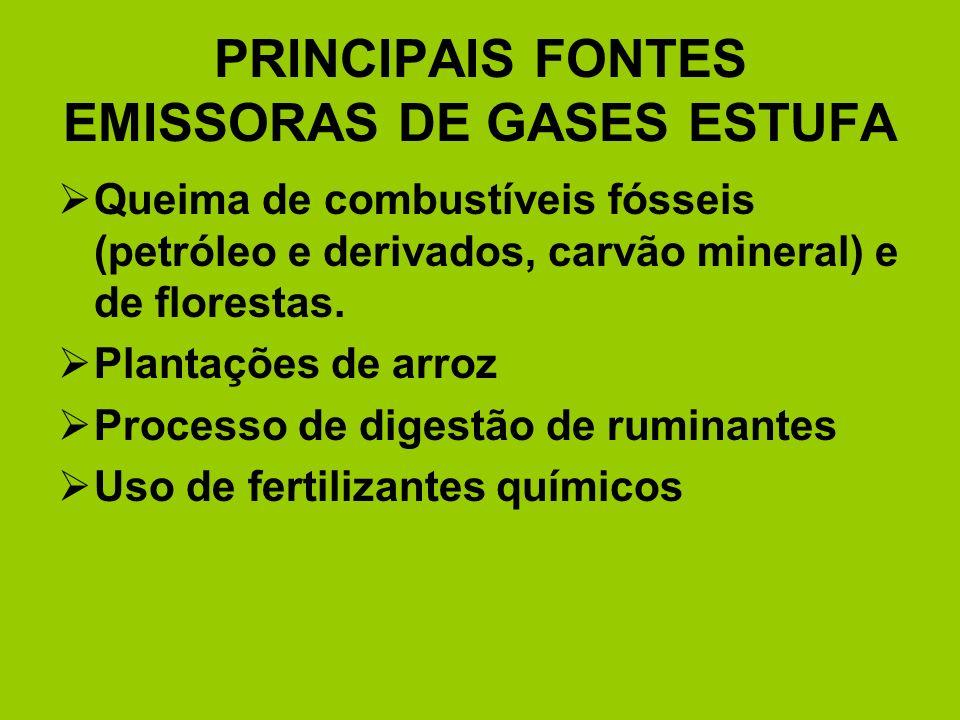 PRINCIPAIS FONTES EMISSORAS DE GASES ESTUFA Queima de combustíveis fósseis (petróleo e derivados, carvão mineral) e de florestas. Plantações de arroz