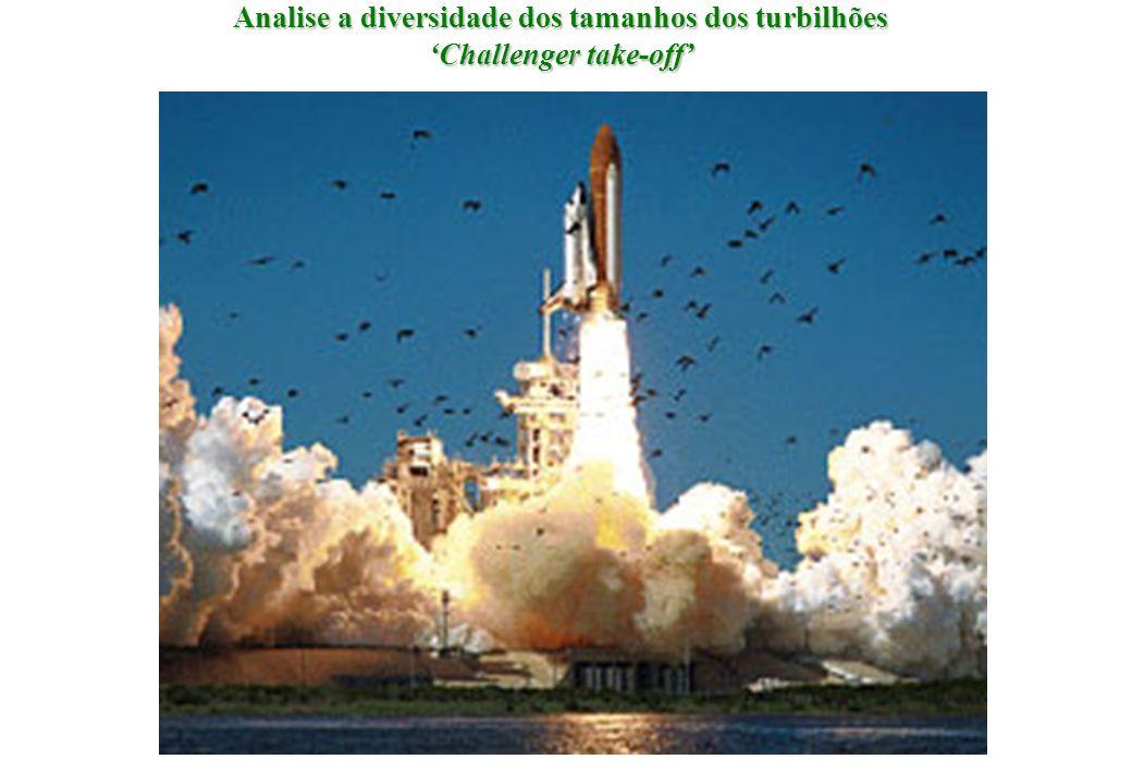 Analise a diversidade dos tamanhos dos turbilhões Challenger take-off