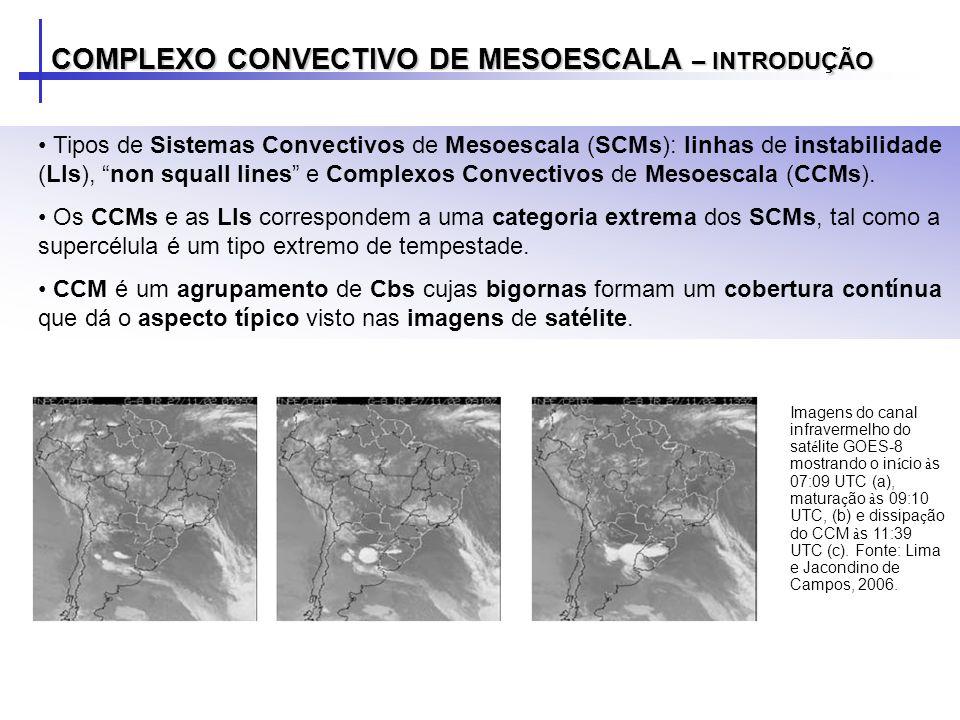Tipos de Sistemas Convectivos de Mesoescala (SCMs): linhas de instabilidade (LIs), non squall lines e Complexos Convectivos de Mesoescala (CCMs). Os C