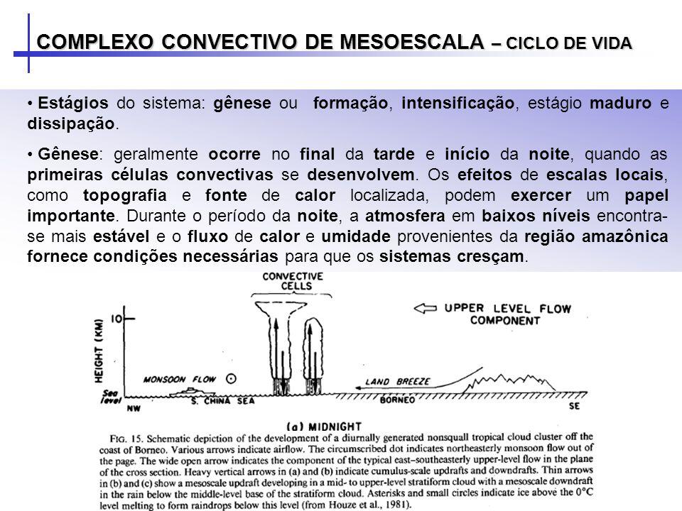 A evolução do sistema apresenta, tanto nas simulações de Rocha (1992) como em estudos observacionais, como o de Cotton et al.