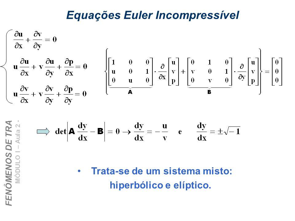 FENÔMENOS DE TRANSPORTE – CHEMTECH MÓDULO I – Aula 2 - Jan/06 Prof. Eugênio Equações Euler Incompressível Trata-se de um sistema misto: hiperbólico e
