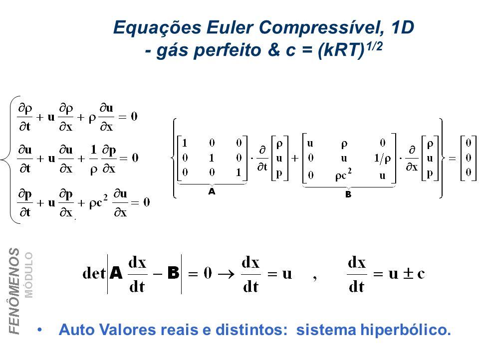 FENÔMENOS DE TRANSPORTE – CHEMTECH MÓDULO I – Aula 2 - Jan/06 Prof. Eugênio Equações Euler Compressível, 1D - gás perfeito & c = (kRT) 1/2 Auto Valore