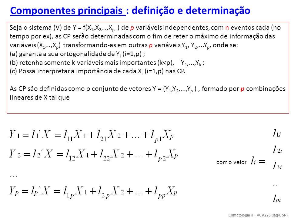 Componentes principais : definição e determinação Seja o sistema (V) de Y = f(X 1,X 2,..,X p ) de p variáveis independentes, com n eventos cada (no te