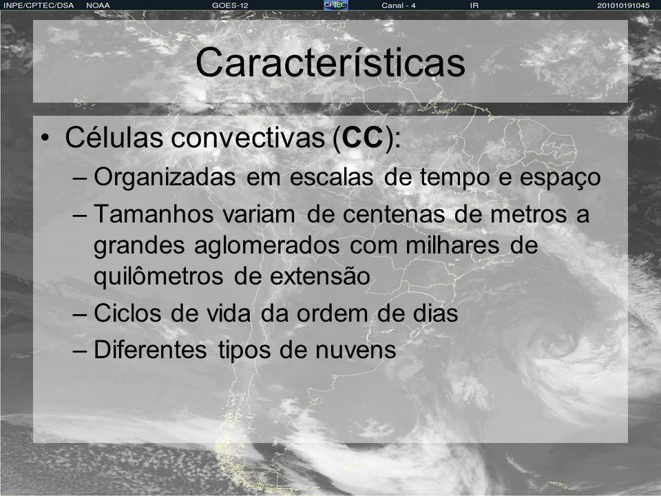 Características Células convectivas (CC): –Organizadas em escalas de tempo e espaço –Tamanhos variam de centenas de metros a grandes aglomerados com m