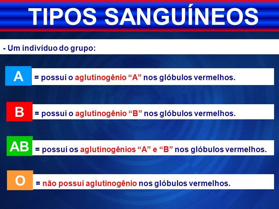 TIPOS SANGUÍNEOS = possui o aglutinogênio B nos glóbulos vermelhos. AB O A B = não possui aglutinogênio nos glóbulos vermelhos. = possui o aglutinogên